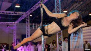 Photographie spectacle pole dance