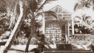 Photo vieillie hotel et cocotiers
